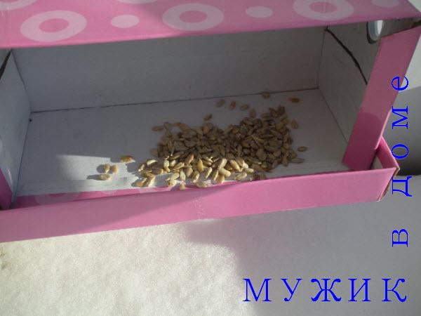 кармушка для птиц из коробки своими руками
