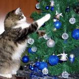 как украсить новогоднюю ель