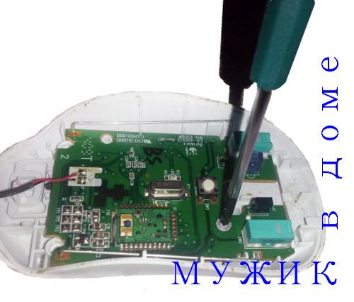 remont-kompyuternoj-myishki-5