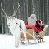 Санта Клаус в санях